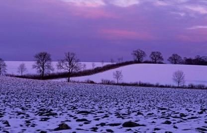 Evening over Rectory farm