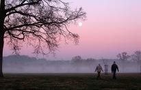 A winters walk