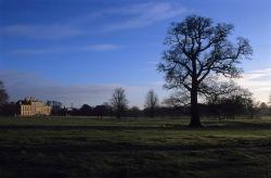 Wimpole park