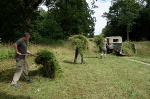 Green haying