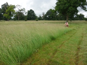 Richard Brown undertaking the 1/8 of an acre