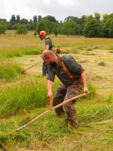 The head to head between scythe and strimmer