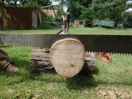 The cross cut saw