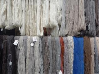 Hanks of wool
