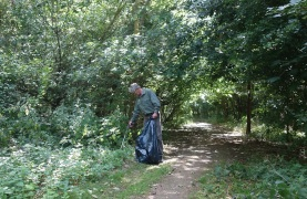 Litter picking in the woods