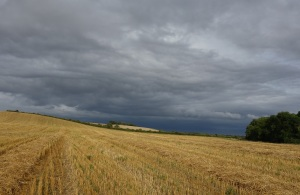 Harvest was in full swing but the weather had other ideas