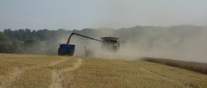 In goes the grain