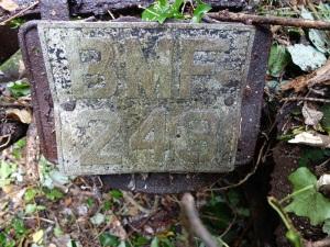 BMF 243