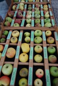 Apple day at Burwash manor