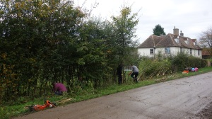 The hedge laying course
