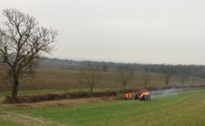 Burning the brash from the hedge