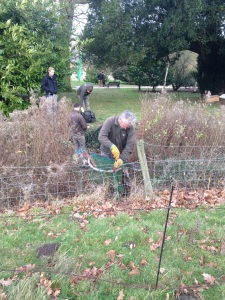 All hands on deck to help the gardeners trim the rabbit population