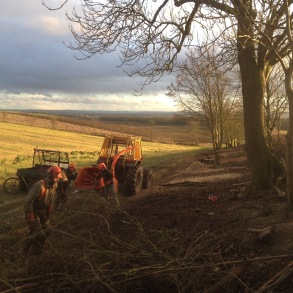 Chipping the hedge brash