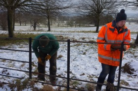 Taking down the west avenue iron fence