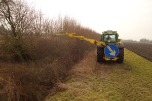 Karl topping the hedge with a circular saw