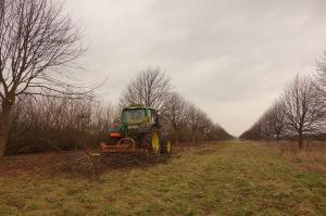 Mulching the hedge arisings