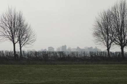 Whaddon church in the distance