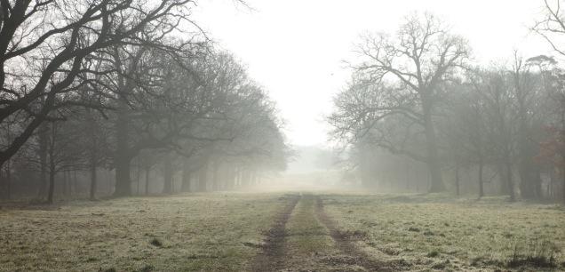 Ebbing mist