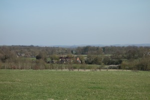 A view from the folly
