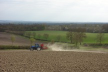 Drilling oats in the Mare Furlong
