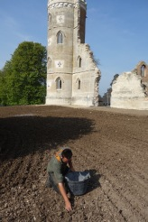Stone picking
