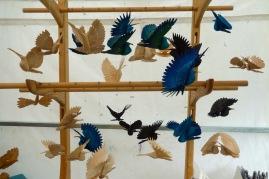 Sean Hellman's fan birds