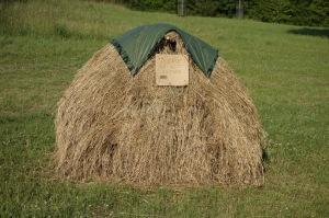 Alistair's hay cock