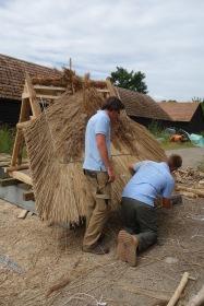 Reed thatching