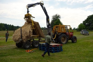 Thatch in place