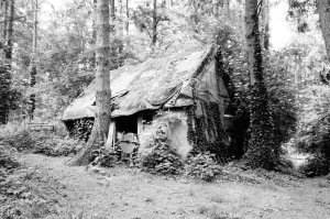 One of the first house's built
