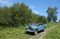 Safari in Lynchmere