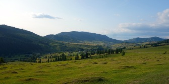 An evening walk up to the high meadow