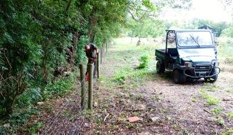 More fencing in the Woodyard