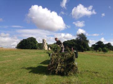 Green haying Folly Field