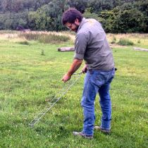 Tom using the Lazydog chisel hoe for creeping thistle