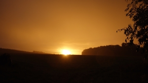 Sunrise over Cobbs wood farm
