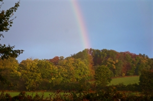 Rainbow over the Gloucester woods