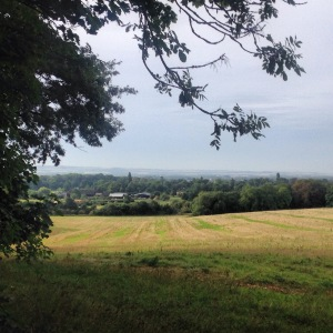 Wimpole Home farm