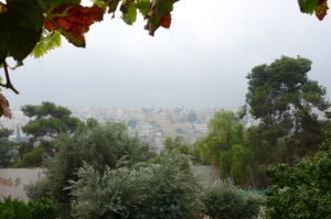 Down town Amman