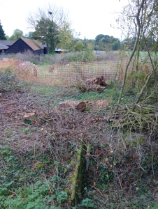 Restoring the ditch