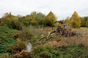 Four loads of timber to cart away
