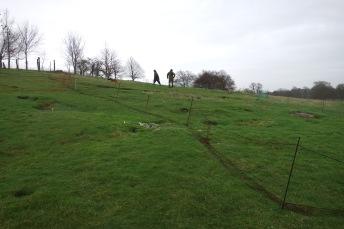 Arrington hill