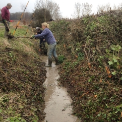 Cleaning the ditch