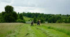 Setting up for the Wimpole scythe festival