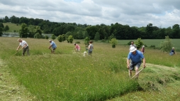 The Northumberland scythe in action