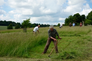 Jim and Paul mowing a 10x10 plot as a team