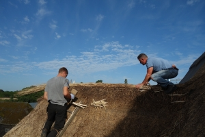 Thatching the Great Barn