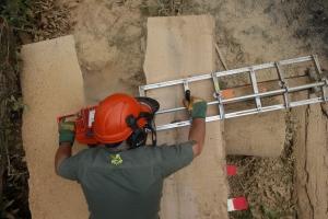 Shane milling some oak for beams