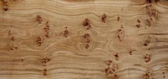 Pippy oak plank