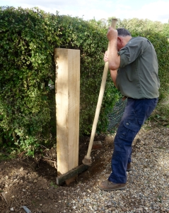 Tamping in an oak post